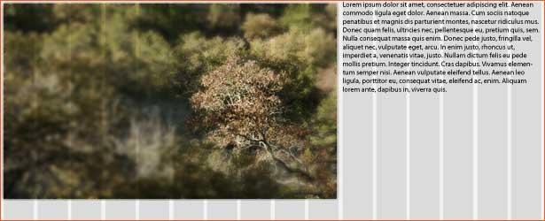 foto en bijschrift op een raster met minimale HTML