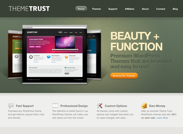 Professionele WordPress-thema's