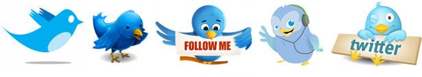 Twitter linnut