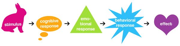 La relación de respuesta cognitivo-emocional-conductual