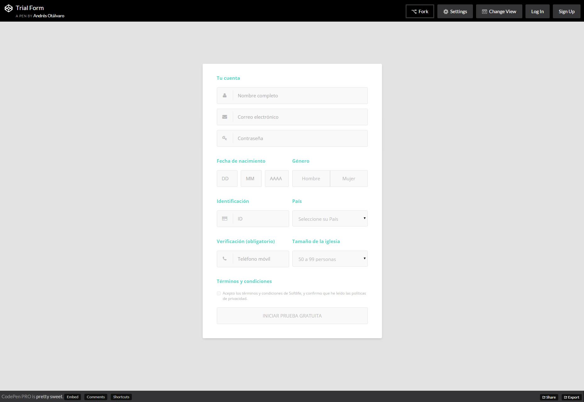 Formulario de prueba: Bonita plantilla de formulario CSS