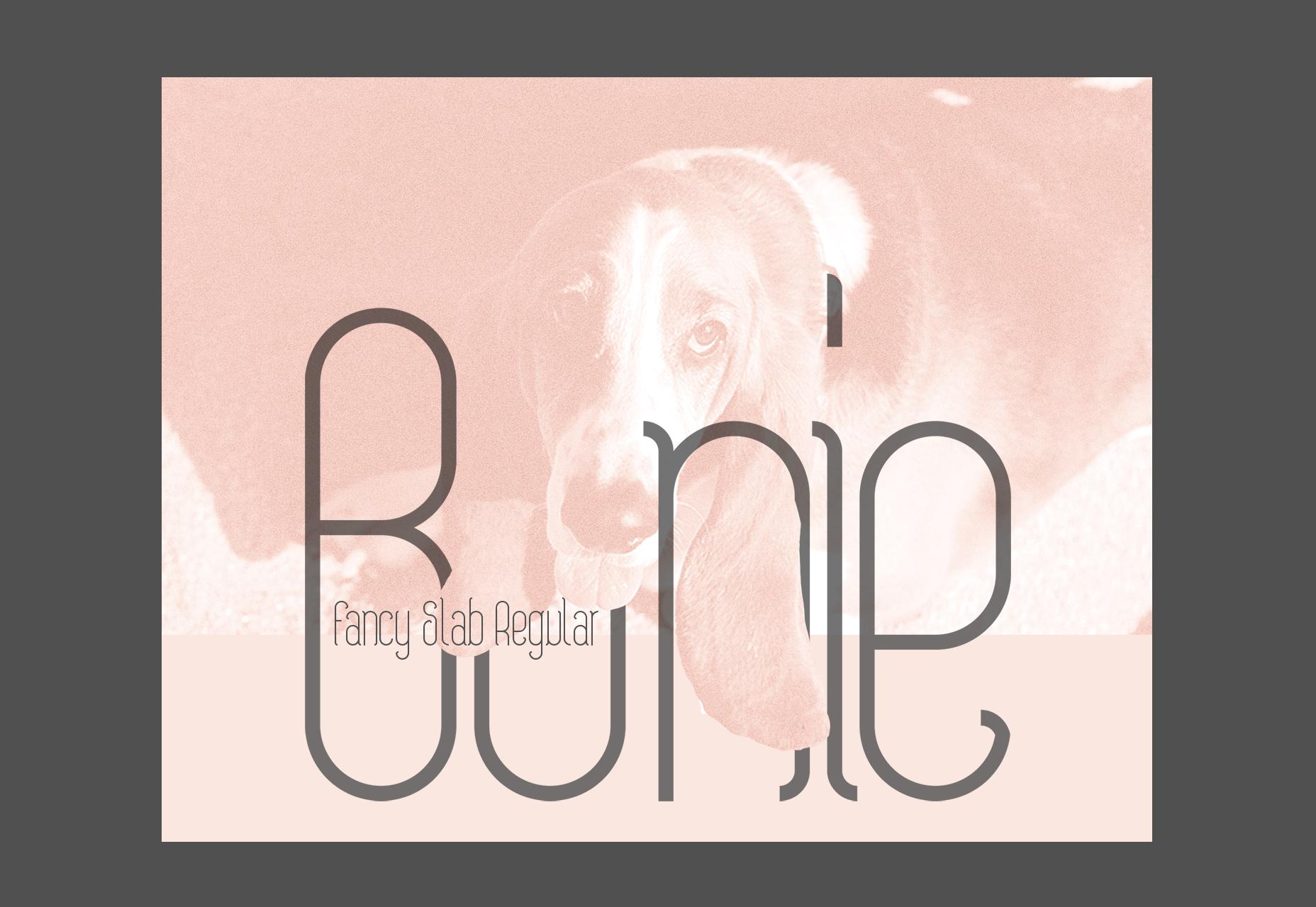 Bonie: Fancy Slab Regular Typeface