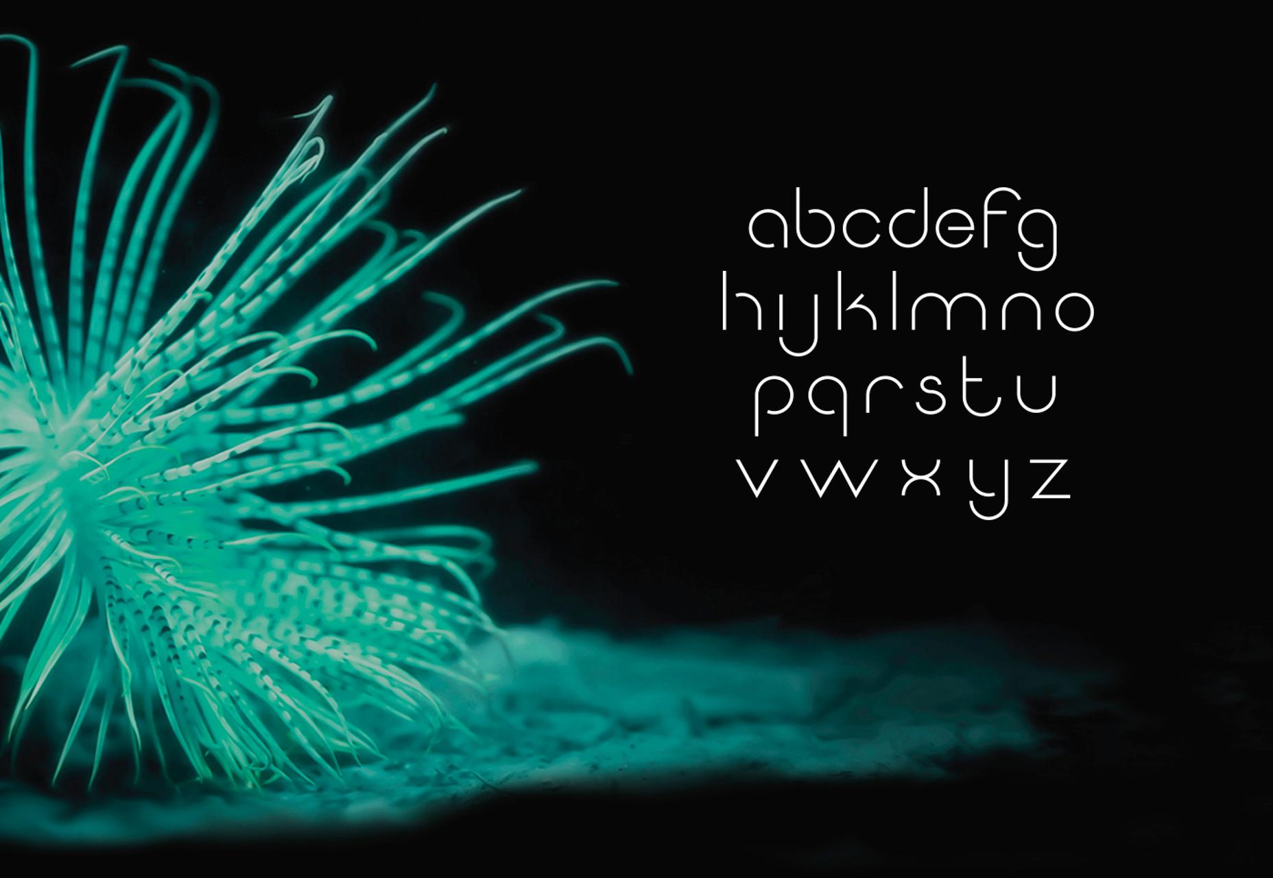 Kvantti: Sans Serif Thin Typeface