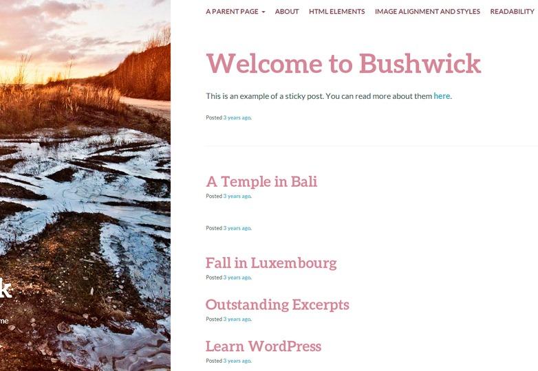 Bushwick WP theme