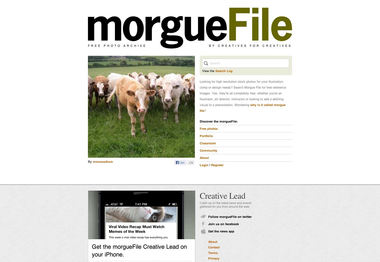 Morguefile.com fotos gratis