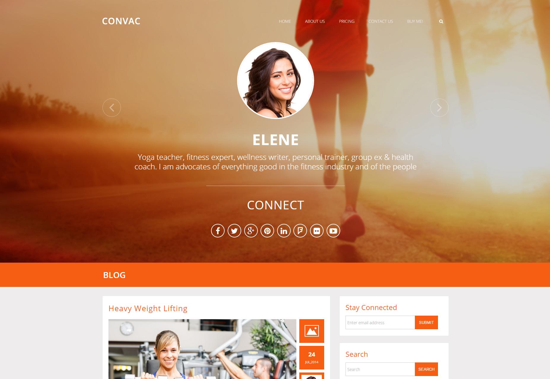 Startup WP Themes, una colección completa