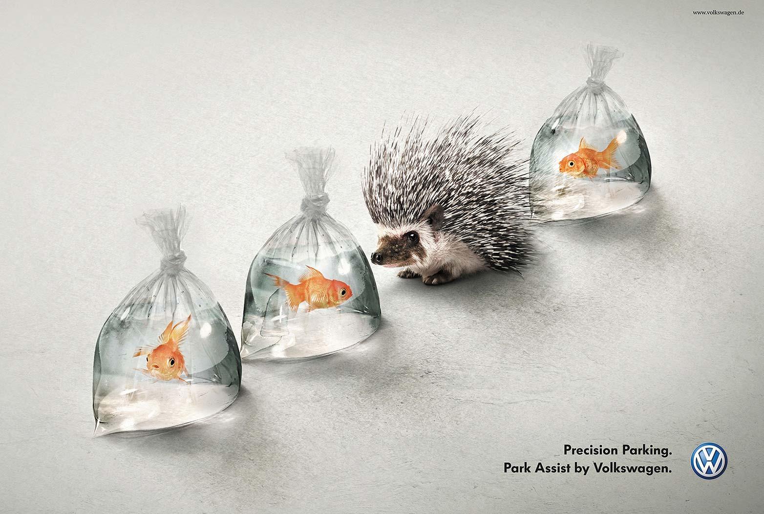 VW Hedgehog