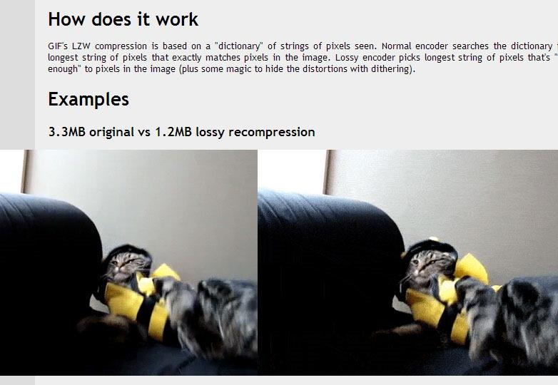 Lossy GIF compressor