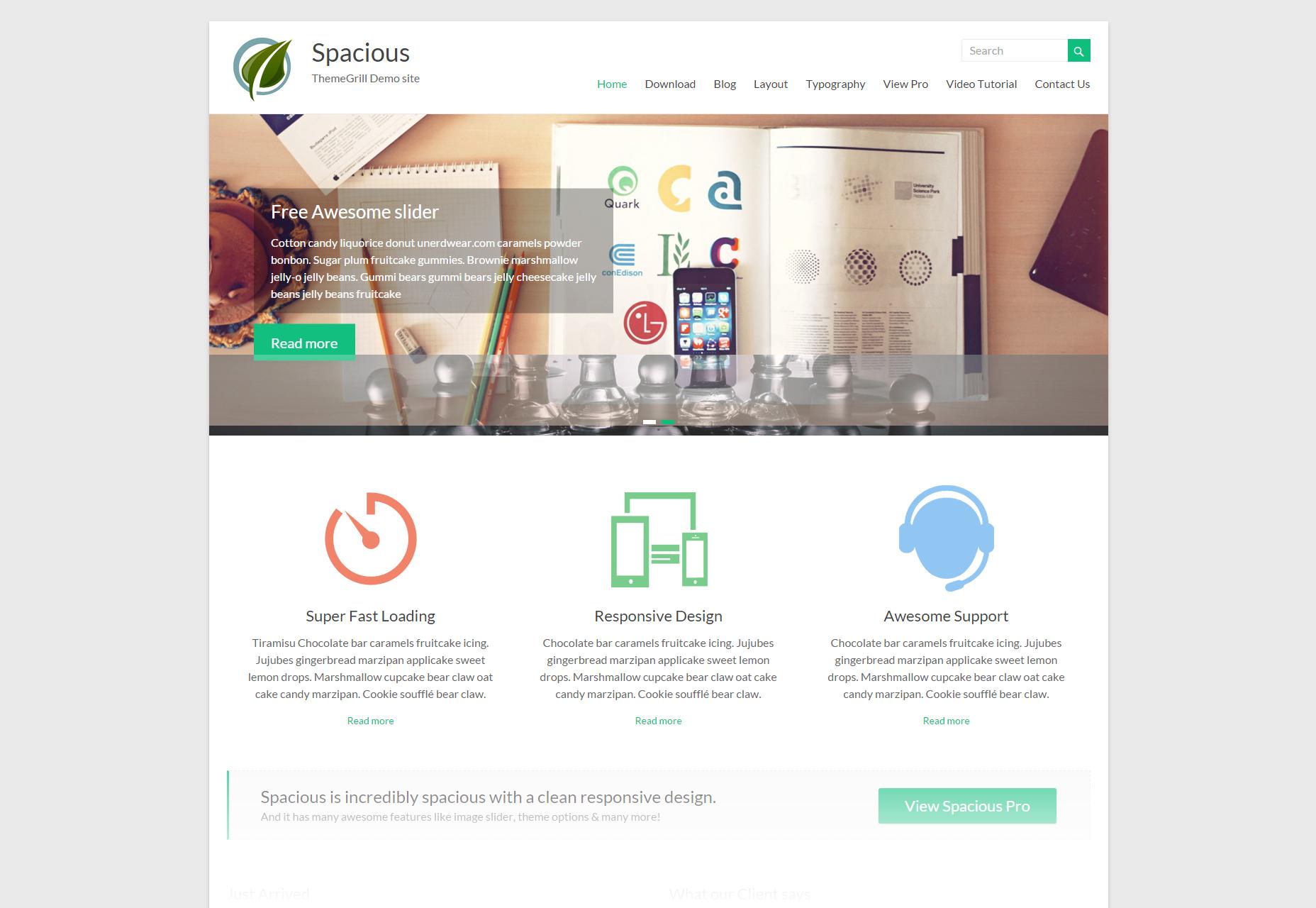 Ruim: schoon multifunctioneel WordPress-thema