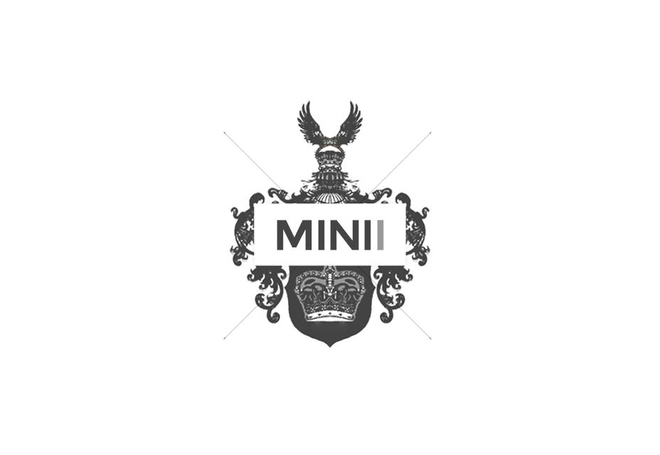 MINI 2
