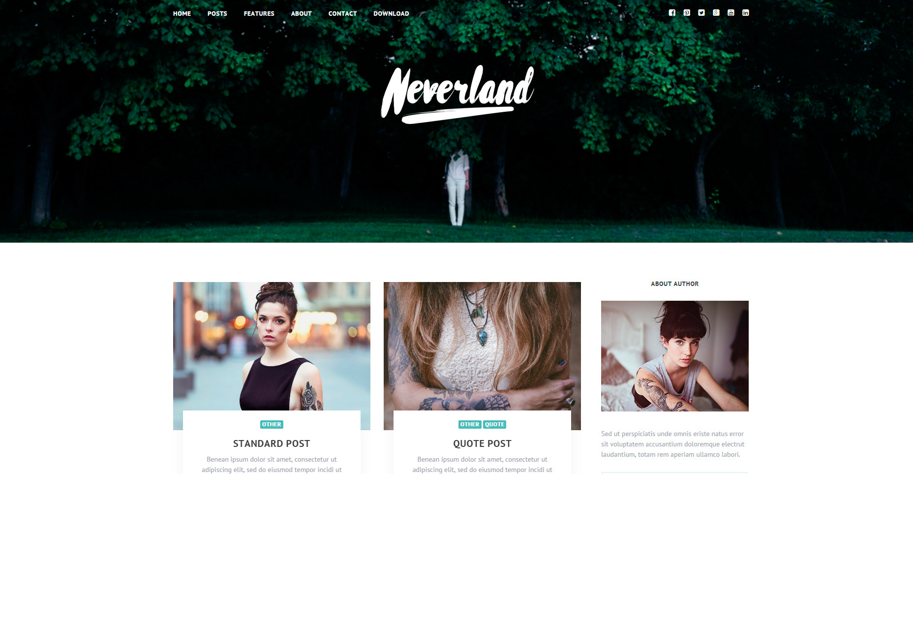 Neverland: Tema de WordPress para blog personal gratuito