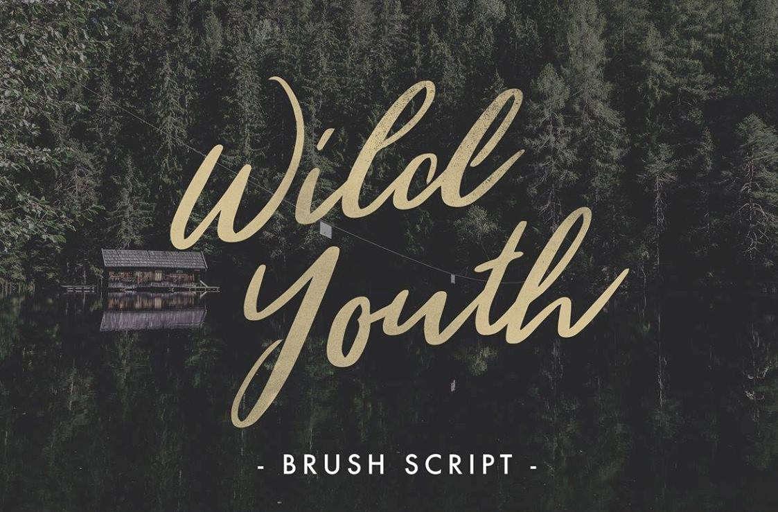 juventud salvaje