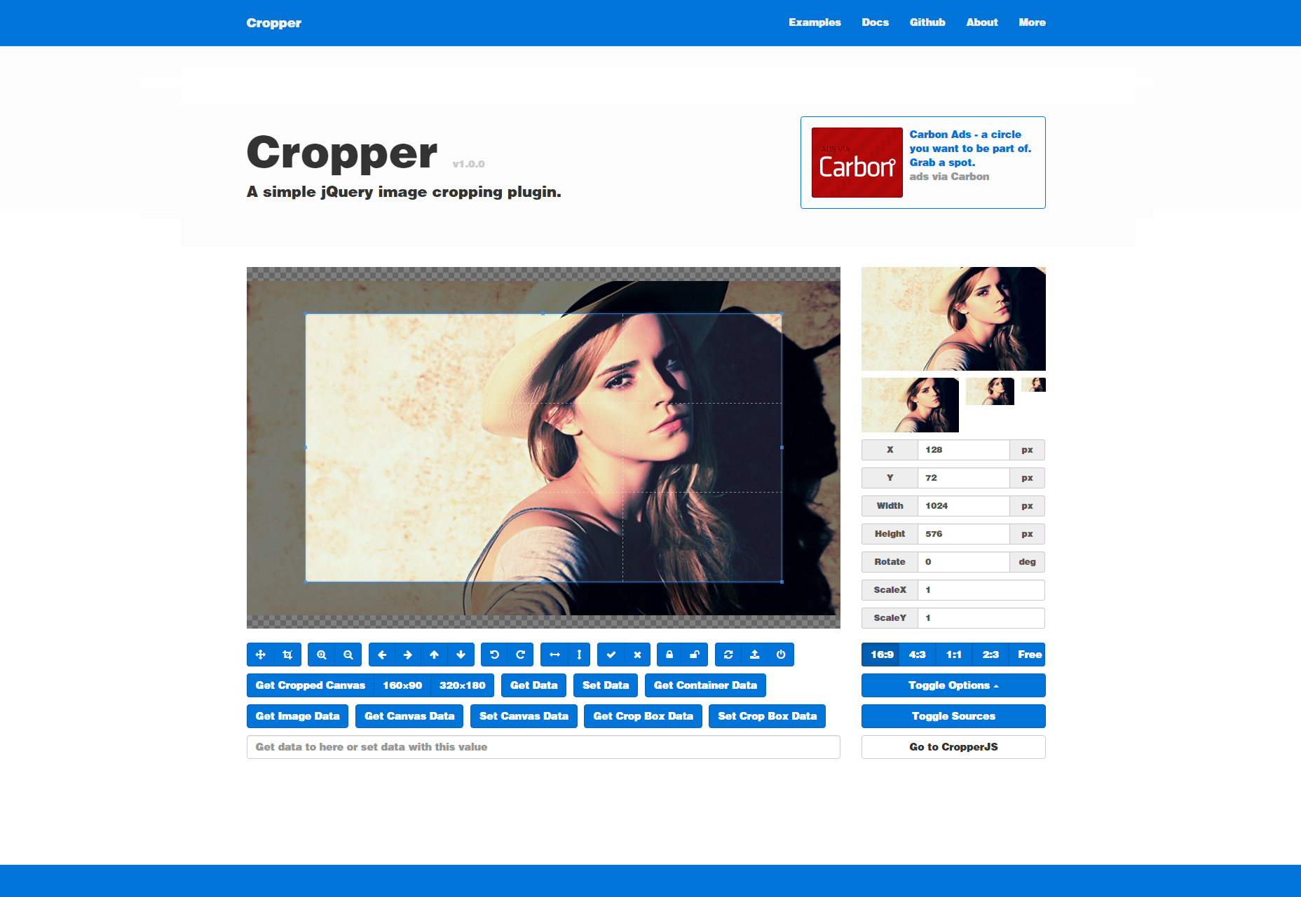Cropper: simple Image Cropping JQuery Plugin