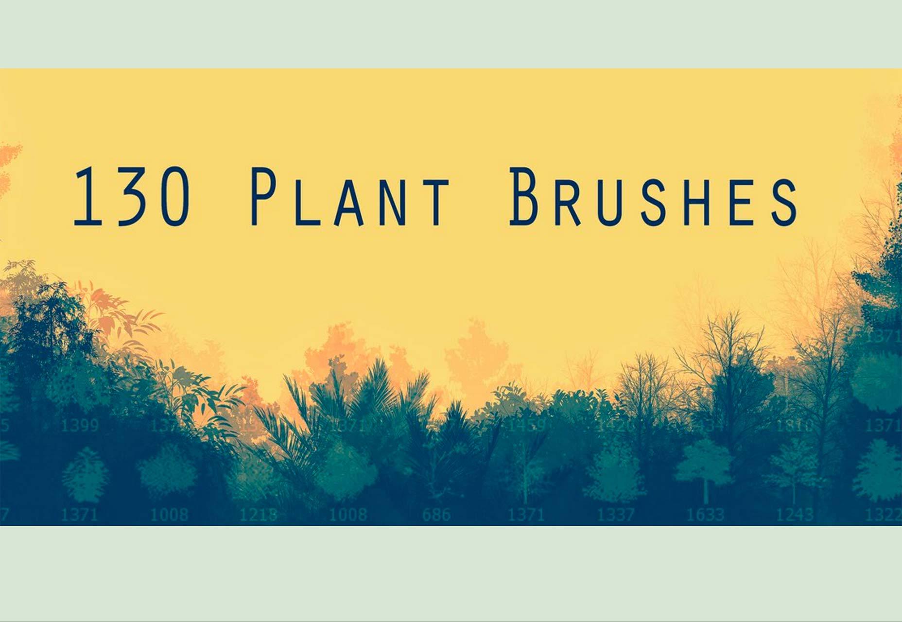 35plant