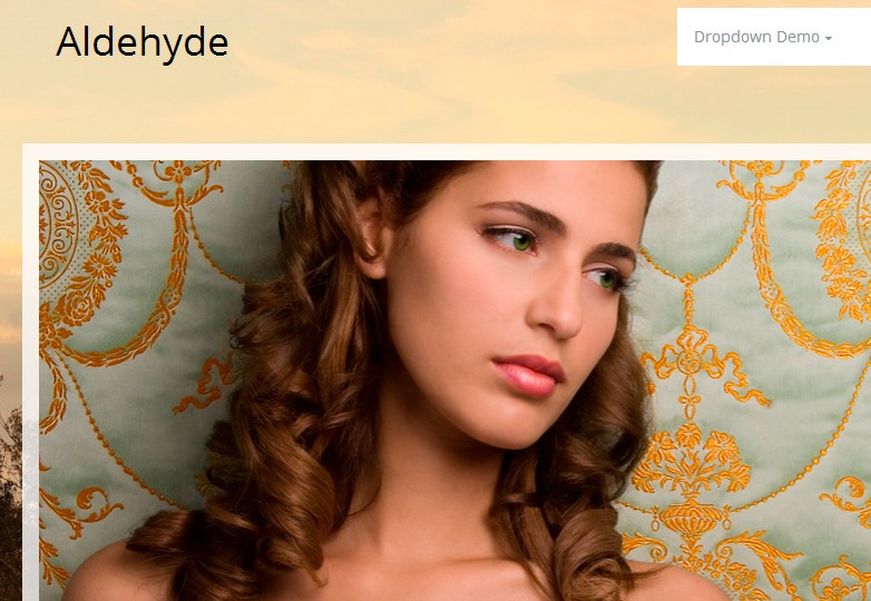 Aldehyde WP theme