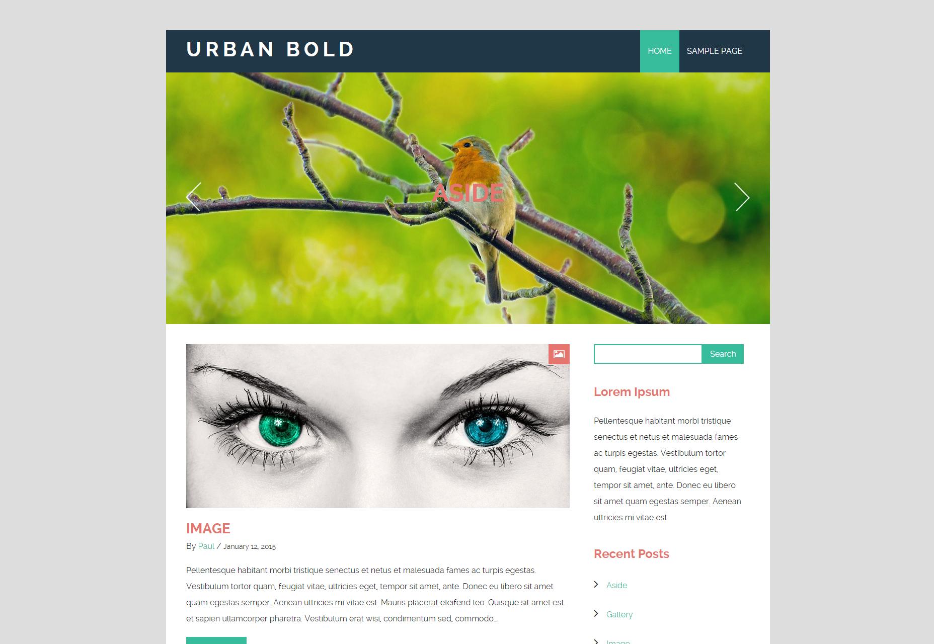Urban Bold: Vernieuwend Blogging WordPress Theme